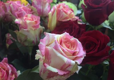 Kvetiny KV prodejna 14