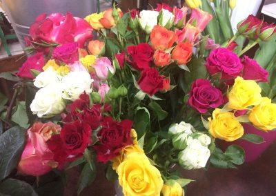 Kvetiny KV prodejna 19