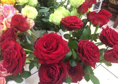Kvetiny KV prodejna 8