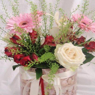 krabice kvetin bila