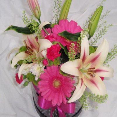 krabice kvetin cerna