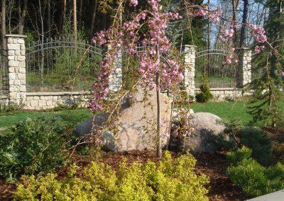 kvetiny kv tvorba zahrady 5